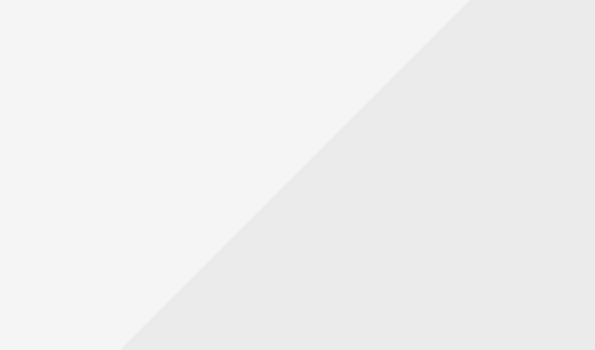 Consectetur aliquet